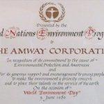 amway kritik